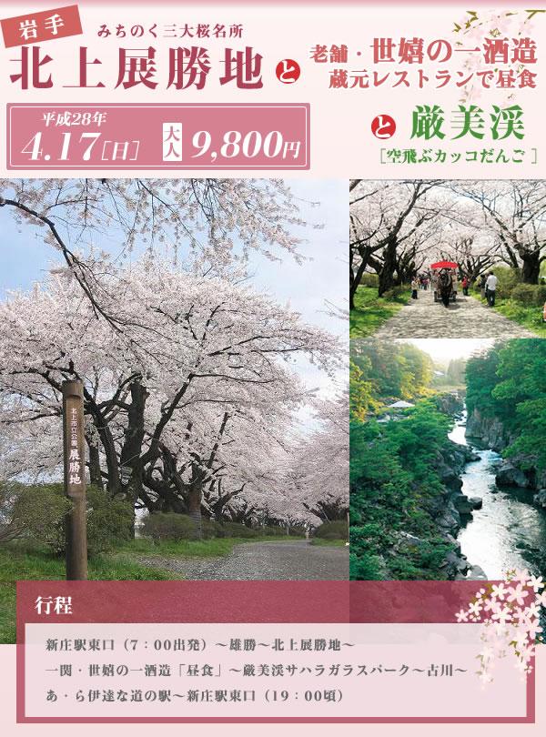 みちのく三大桜名所「北上展勝地」と厳美渓(空飛ぶカッコだんご)